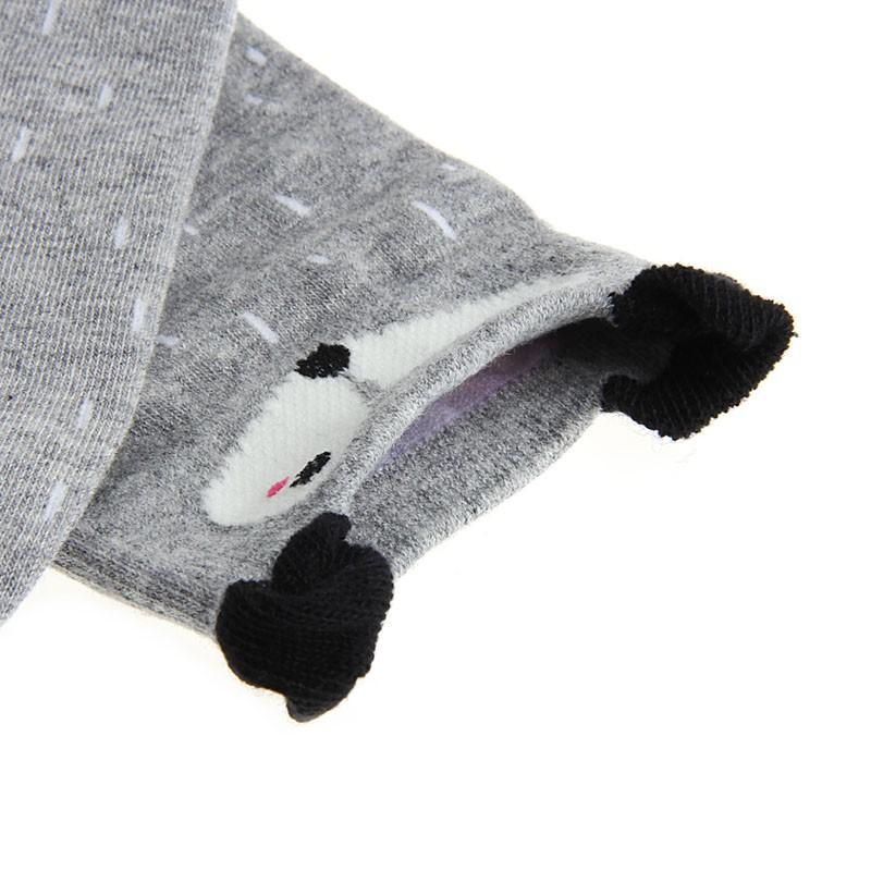 """ColorFul"" - Fox Socks 7"